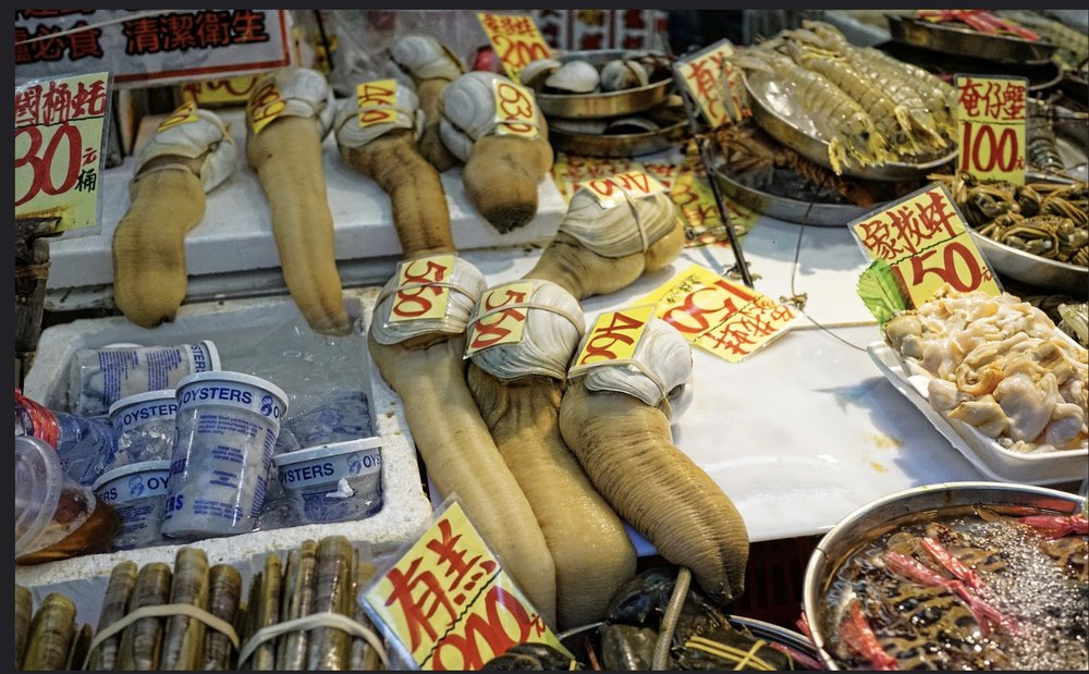 Weird shaped clam