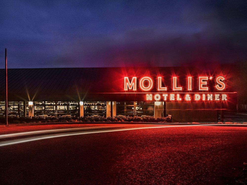 Mollies Motel app