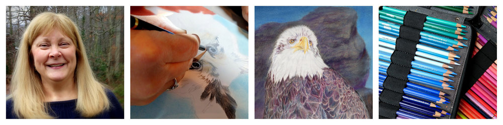 Contact, Painter, Colored Pencils, Andrea Stutesman, Asheville, Black Mountain, NC-001.jpg