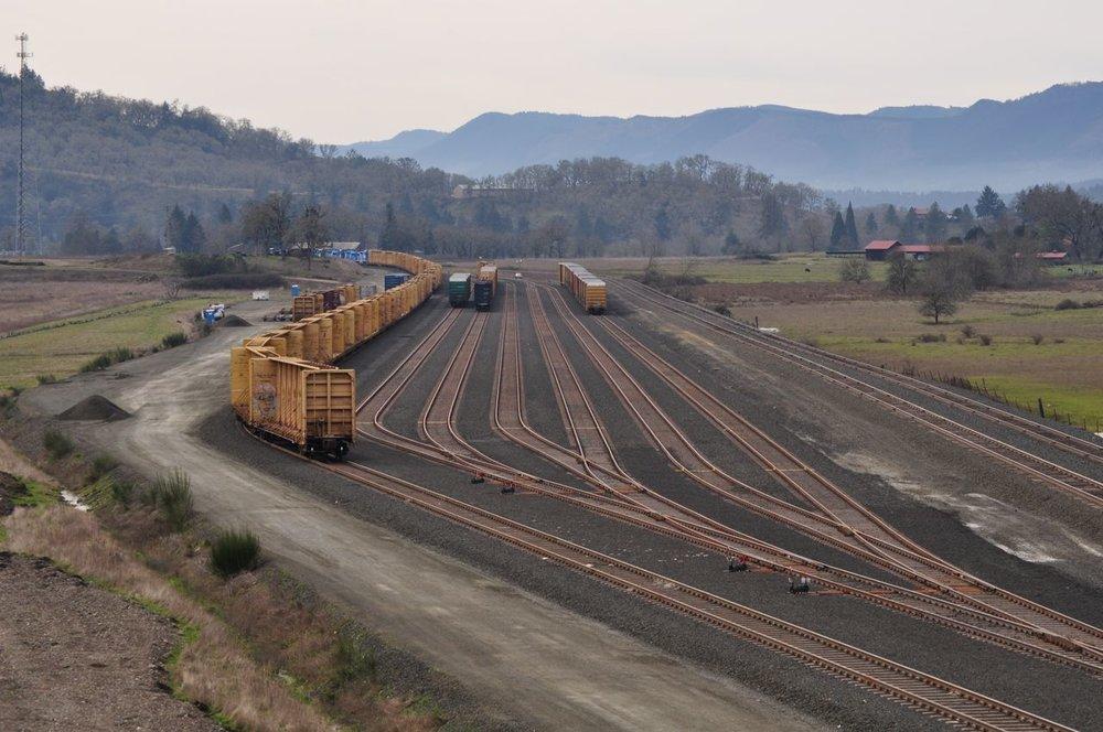 Yard Construction
