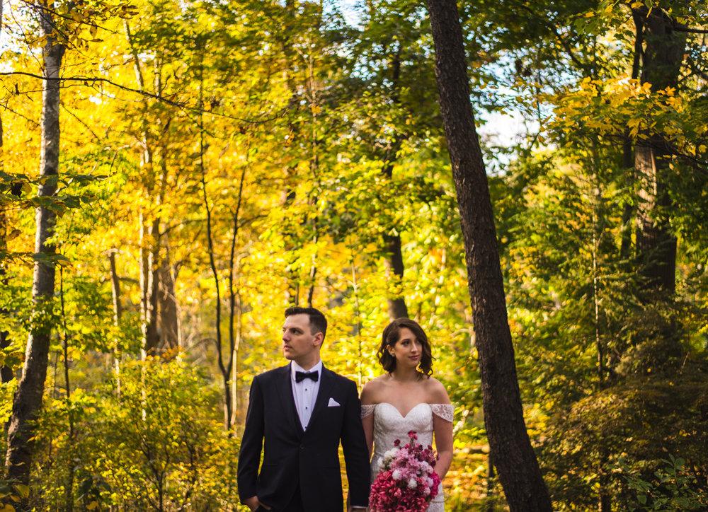 Mike & Allison's Downtown Hamilton RBG Royal Botanical Gardens Wedding Fall Burlington Aidan Hennebry Hush Hush Photography & Film-33.jpg