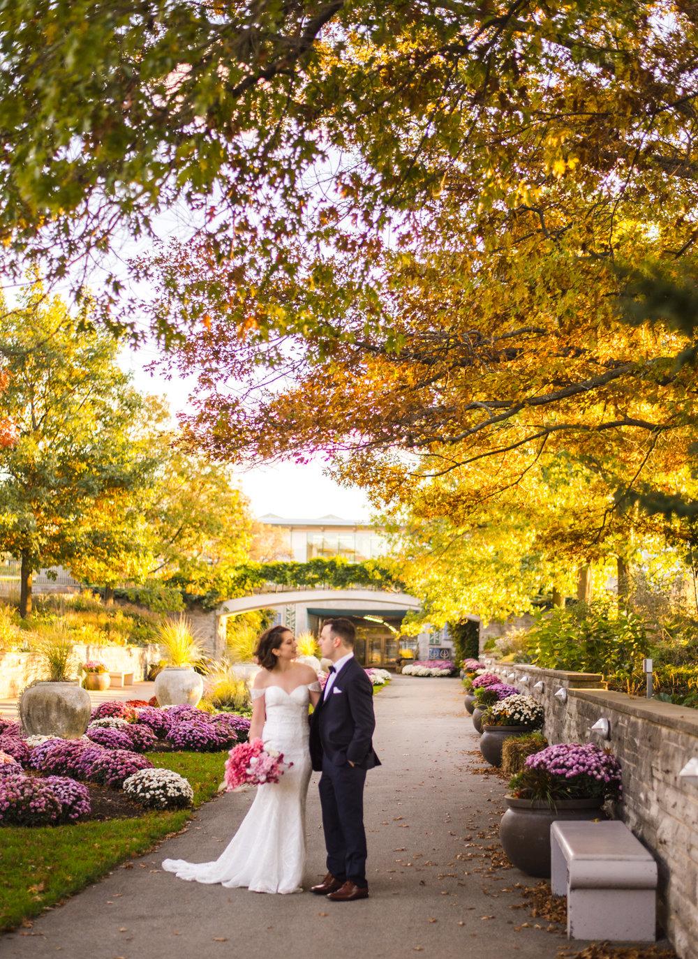 Mike & Allison's Downtown Hamilton RBG Royal Botanical Gardens Wedding Fall Burlington Aidan Hennebry Hush Hush Photography & Film-45.jpg