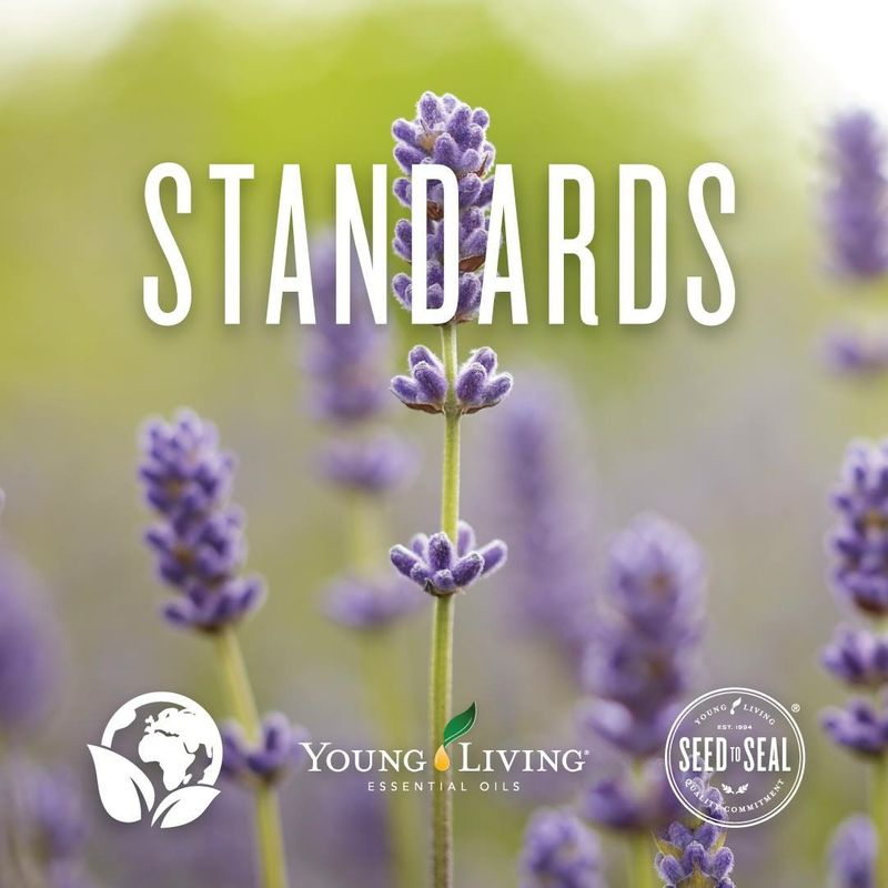 The standards of essential oils