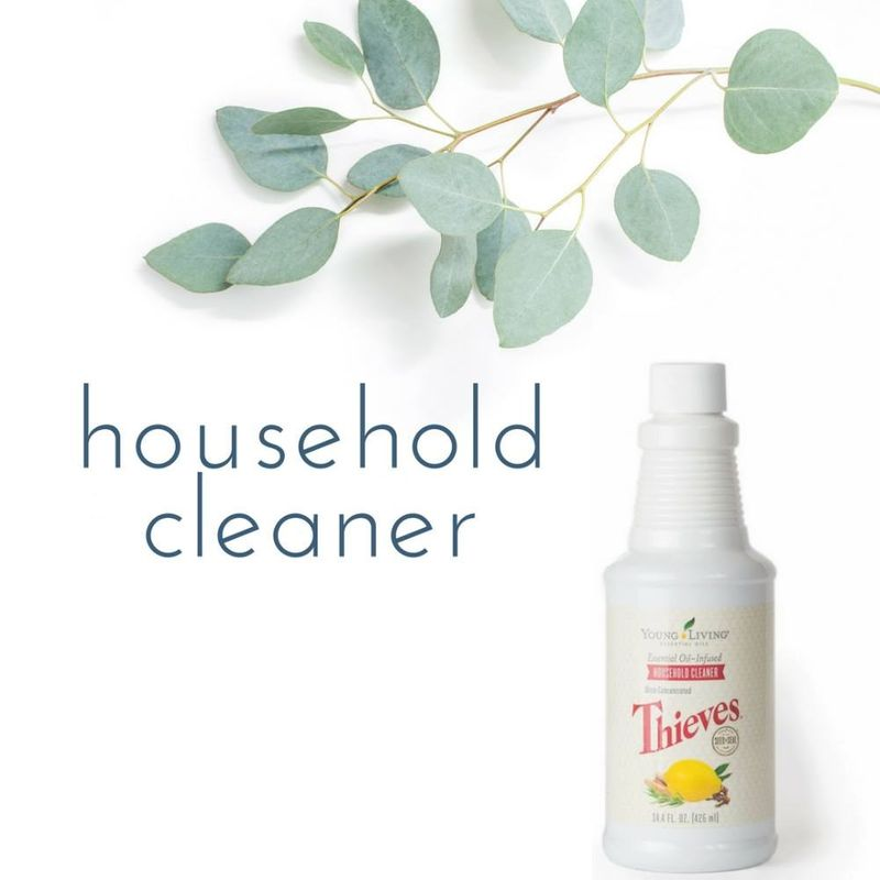 Chemical Free Cleaners