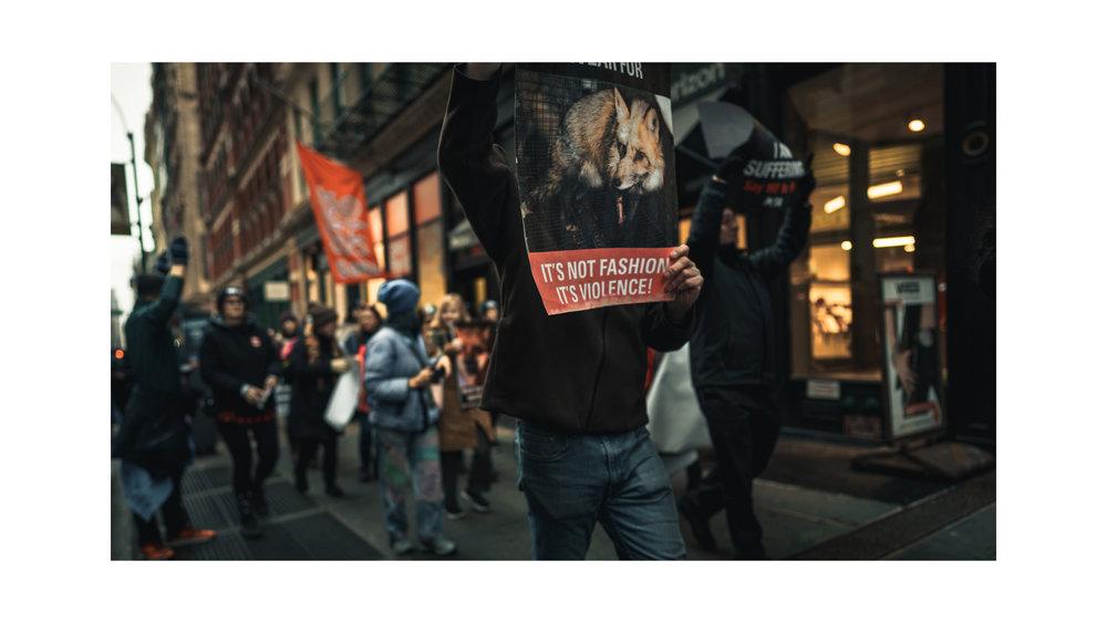 """""""Fashion is Murder!""""   Ramon Brito    Contact"""