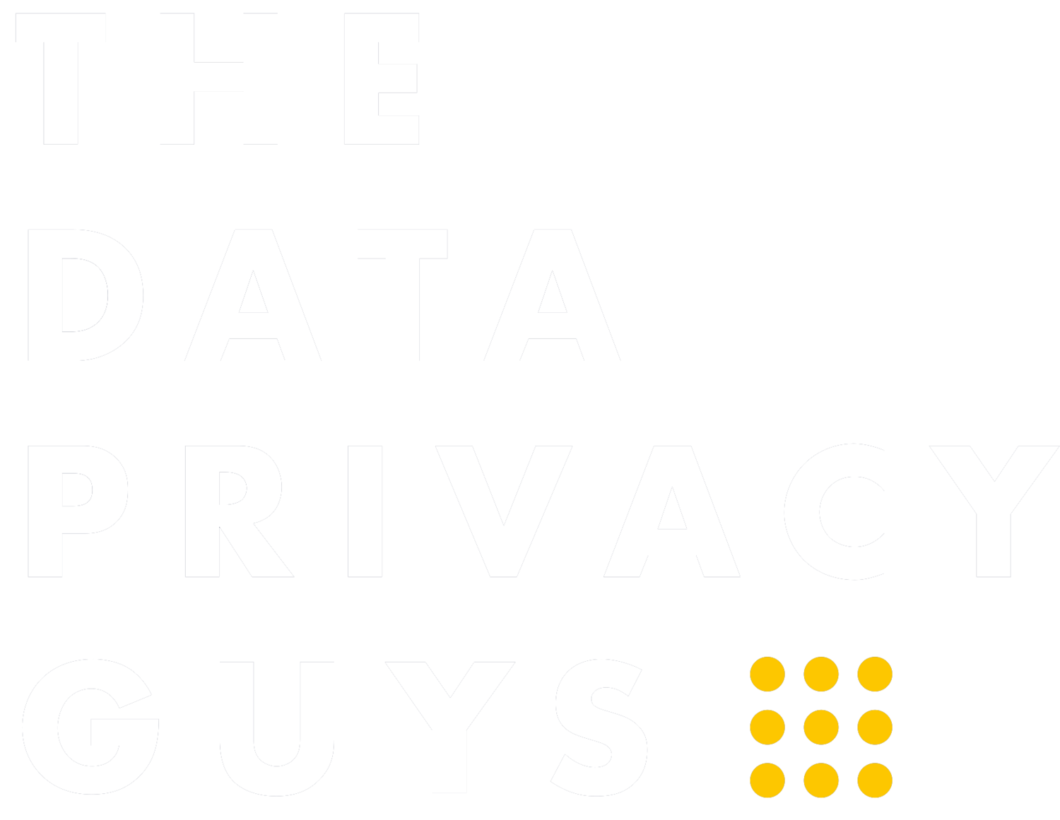 The Data Privacy Guys