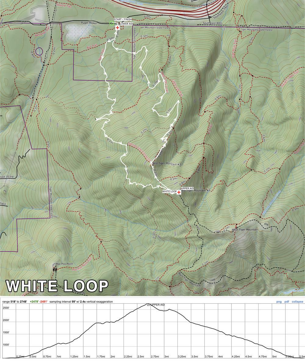 whiteloop.jpg