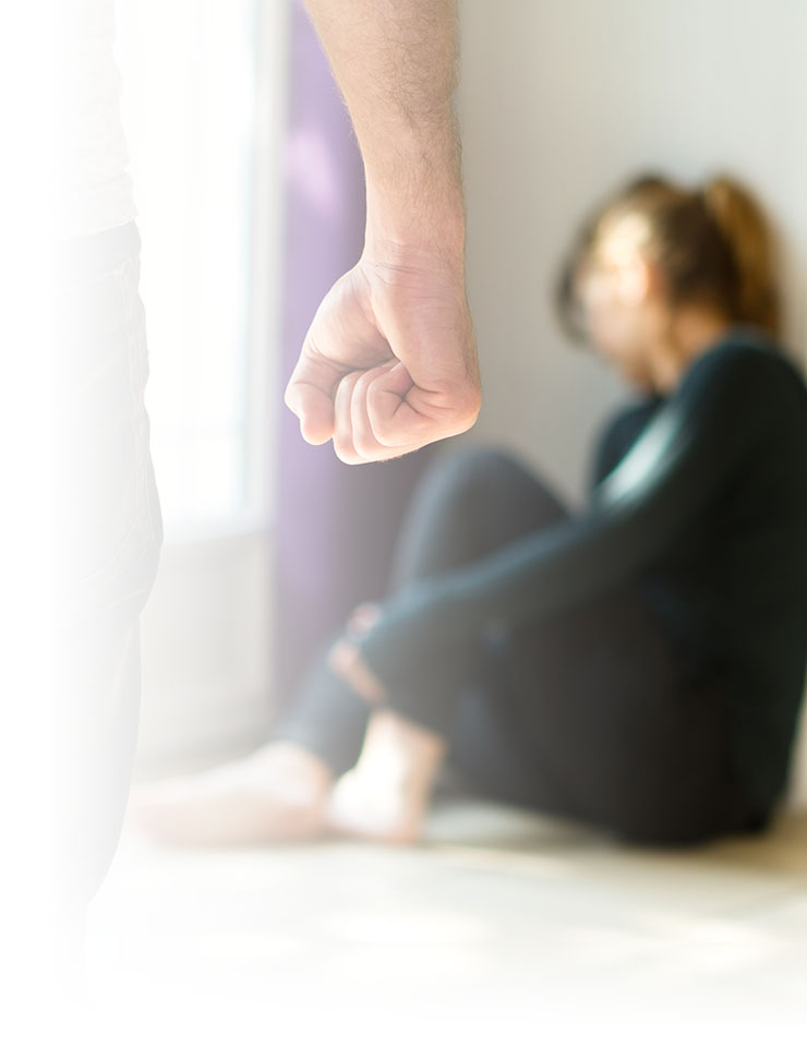 How WISH can help during this stage   Advocates are direct support staff who advocate for victim rights and provide emotional support to victims. Accompaniment to court proceedings, medical visits, and other appointments is provided as desired.