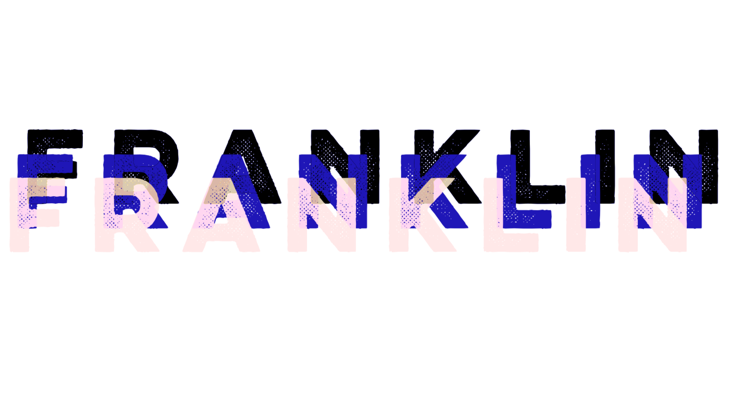 STANLEY FRANKLIN LAW