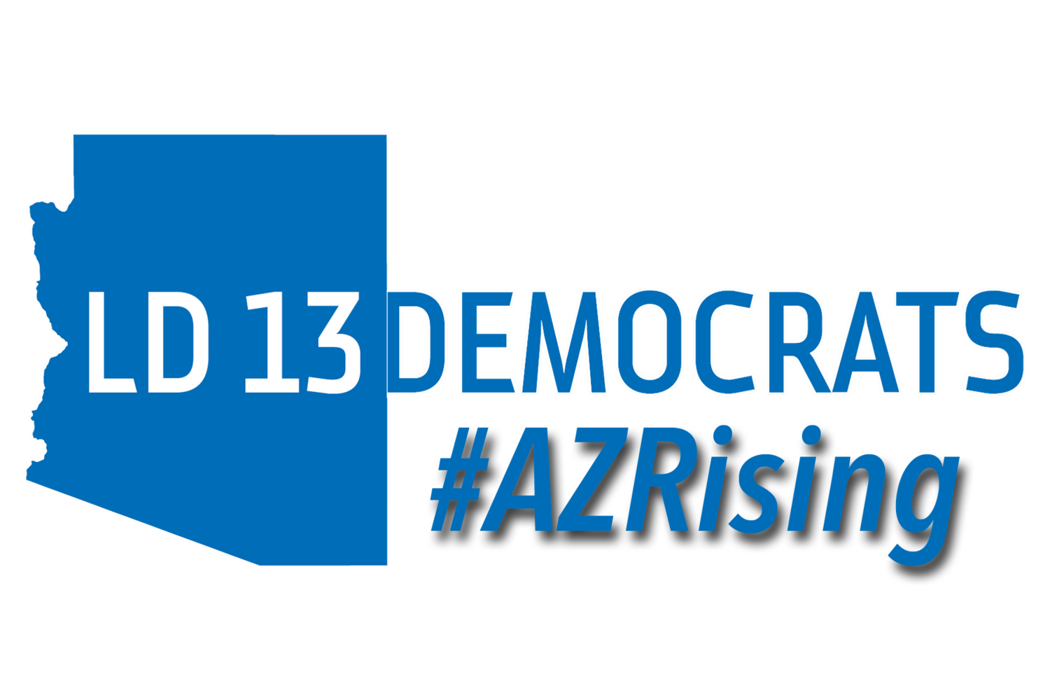 LD 13 Democratic Party