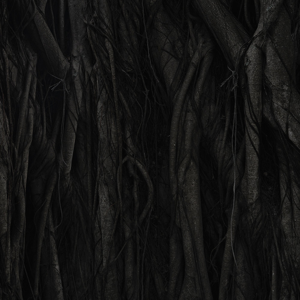 Occupation #8 [ A Forest of One]  - 2017 - ed. of 5 - digital composite - inkjet print on archival mat paper - 240 cm x 145 cm (95 in x 57 in) - detail