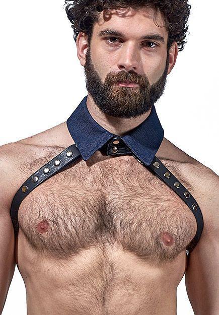 denim-collar-half-harness-lg_720x.jpg