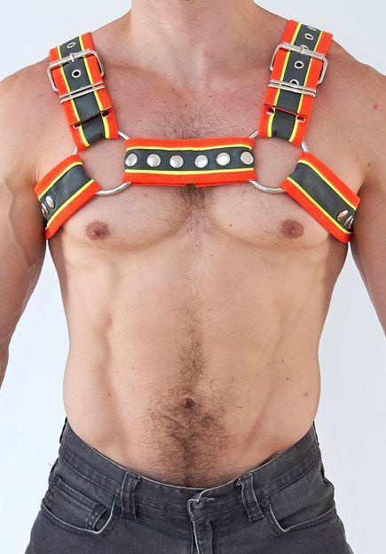 construction-bulldog-half-harness-1_720x.jpg