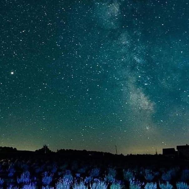 stargazing.jpg