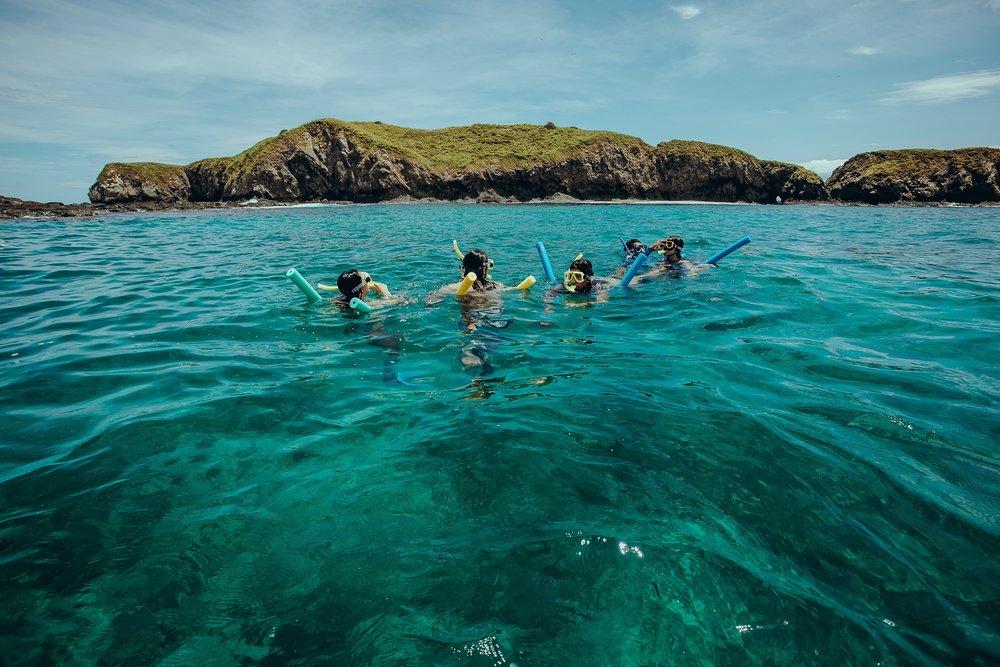 Snorkel20.jpg