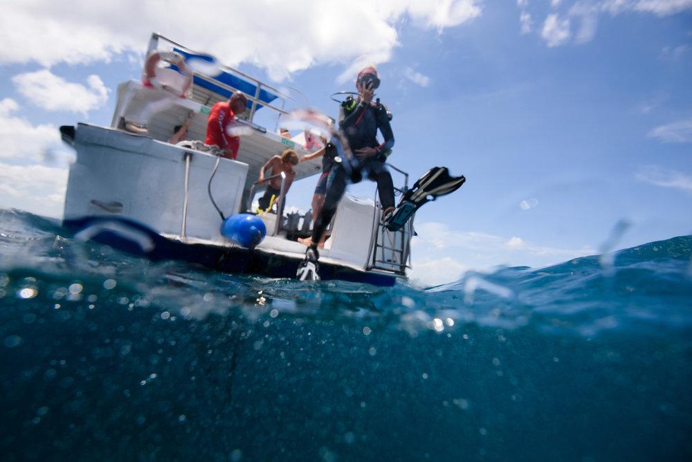 Costa Rica Scuba Diving-4248.jpg