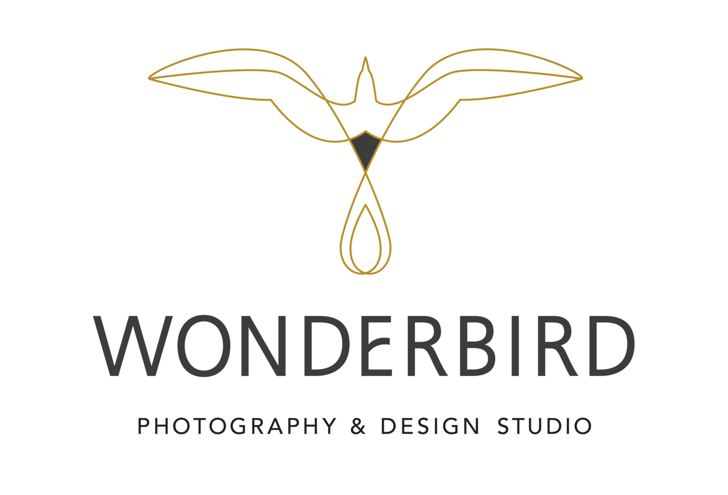 Wonderbird — Photography & Design Studio