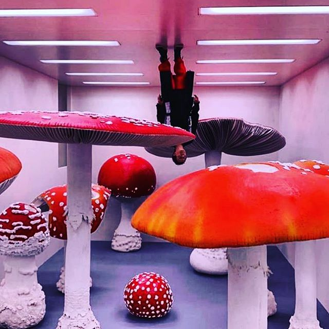 More upside down room craziness. Watch this space...more coming your way soon! #upsidedown #art #retail #mushrooms #immersiveart #experiential #spatial