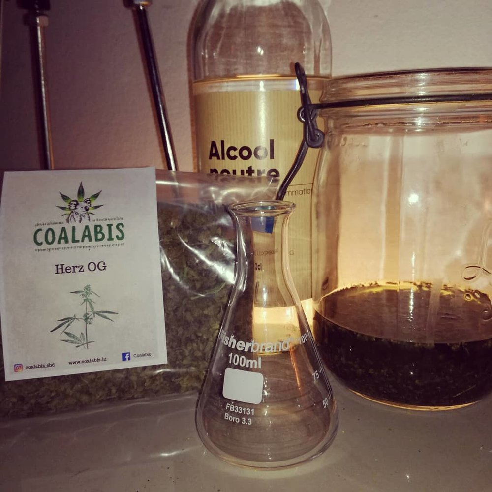Thank You Coalabis! Sponsored Batch, Alcohol,Tincture, Erlenmeyer