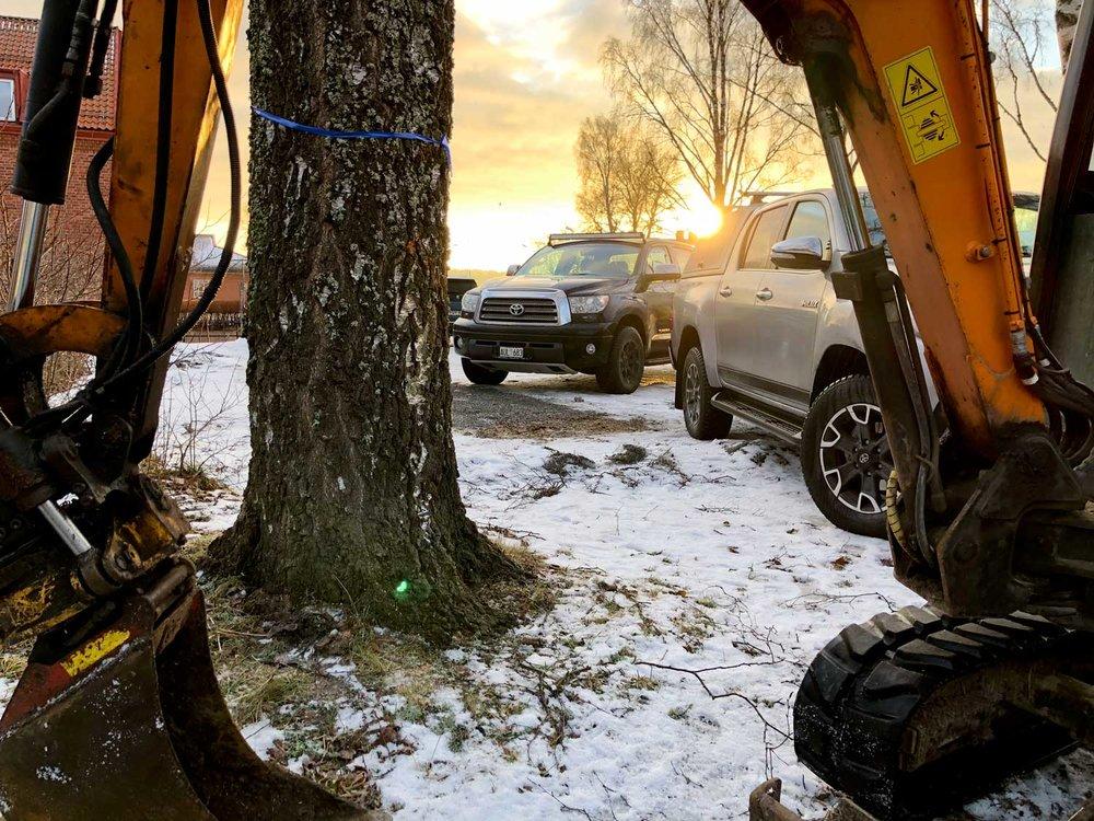 Gräver upp stubbe och rötter från den stora björken