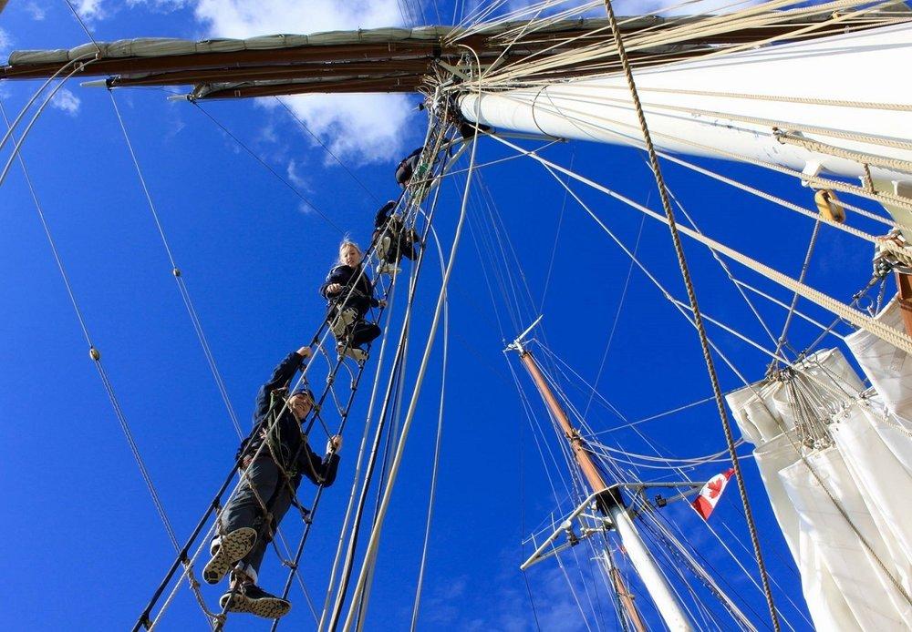 Class Afloat - 大西洋を船で旅しながら、ノバスコシア州高校課程(Gr.11とGr.12)、アカディア大学1年目の単位を取得。West Island College Internationalとして1984年創立。1985年に初航海を果たし、30年以上に渡って1700人以上の生徒たちが参加しました。『我々の教室は、世界にある』この言葉どおり、大西洋に面した国々に立ち寄りながら、それぞれの自然や文化に触れながら学ぶ1年は、一生涯忘れられないものになるでしょう。