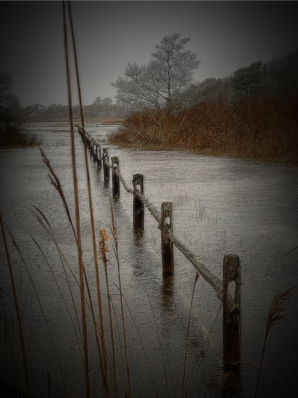 January 1, 2019 - One of my favorite scenes to photograph locally: The Centerville River, in Centerville, Massachusetts (Cape Cod).