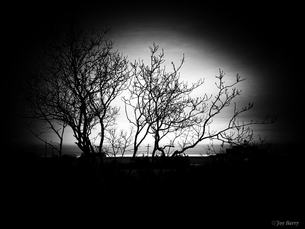 January 24, 2019 - Haunted vista.