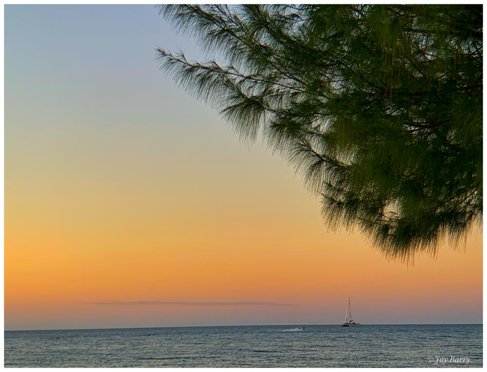 January 31, 2019 - Colorful Cayman.