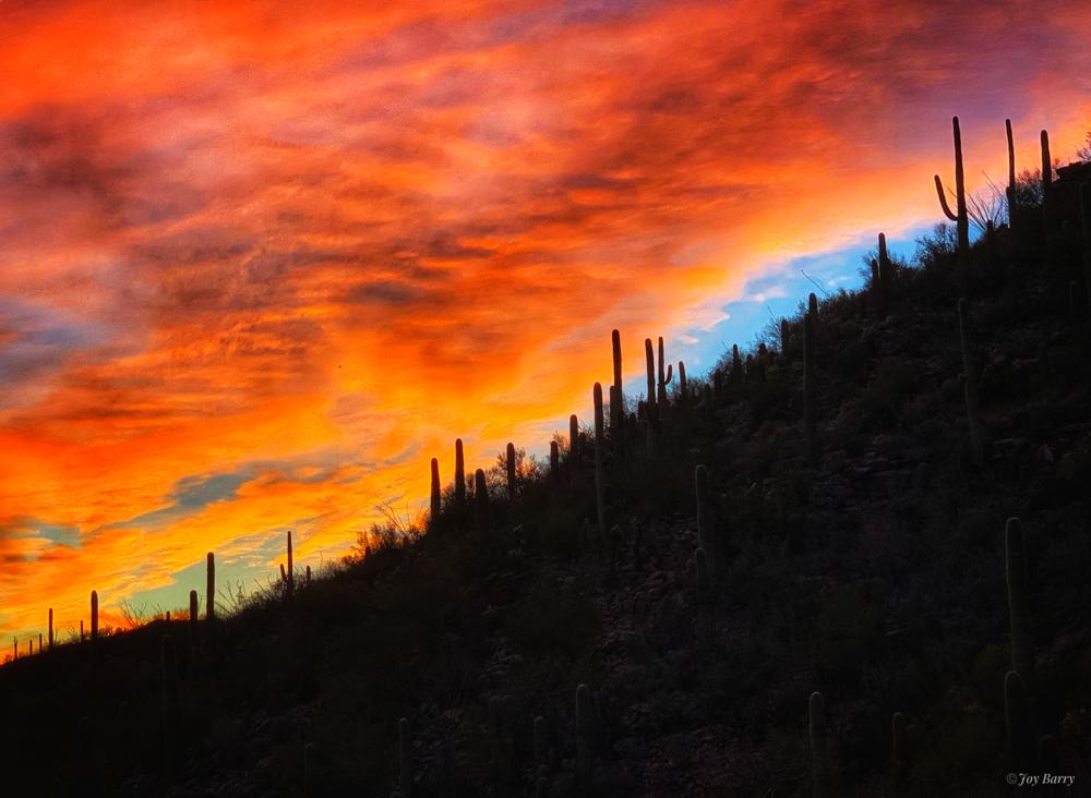 March 2, 2019 - Dramatic Desert Sunset.