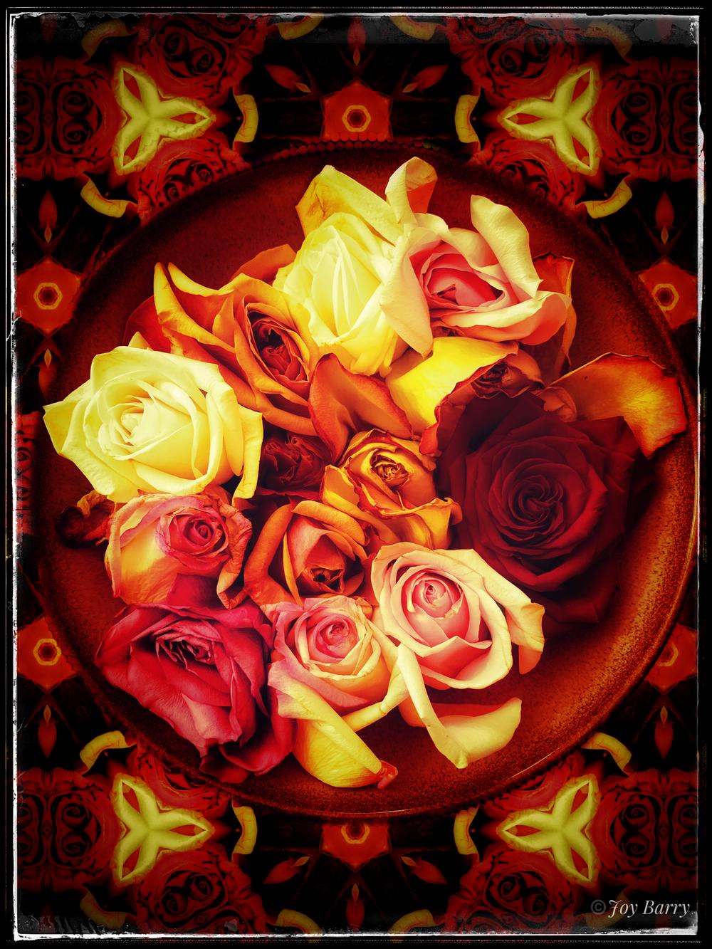 March 15, 2019 - A Riot of Roses; a Plethora of Petals.