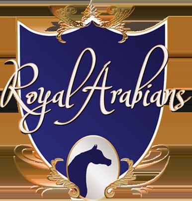 royal arabians.png