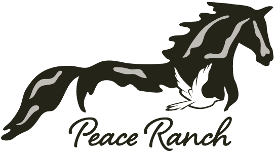 Peace Ranch | Equine Assisted Therapy