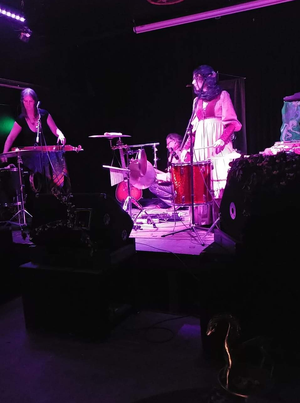 Horse Cult performing at the High Water Mark. Photo by Fawn Hexe.