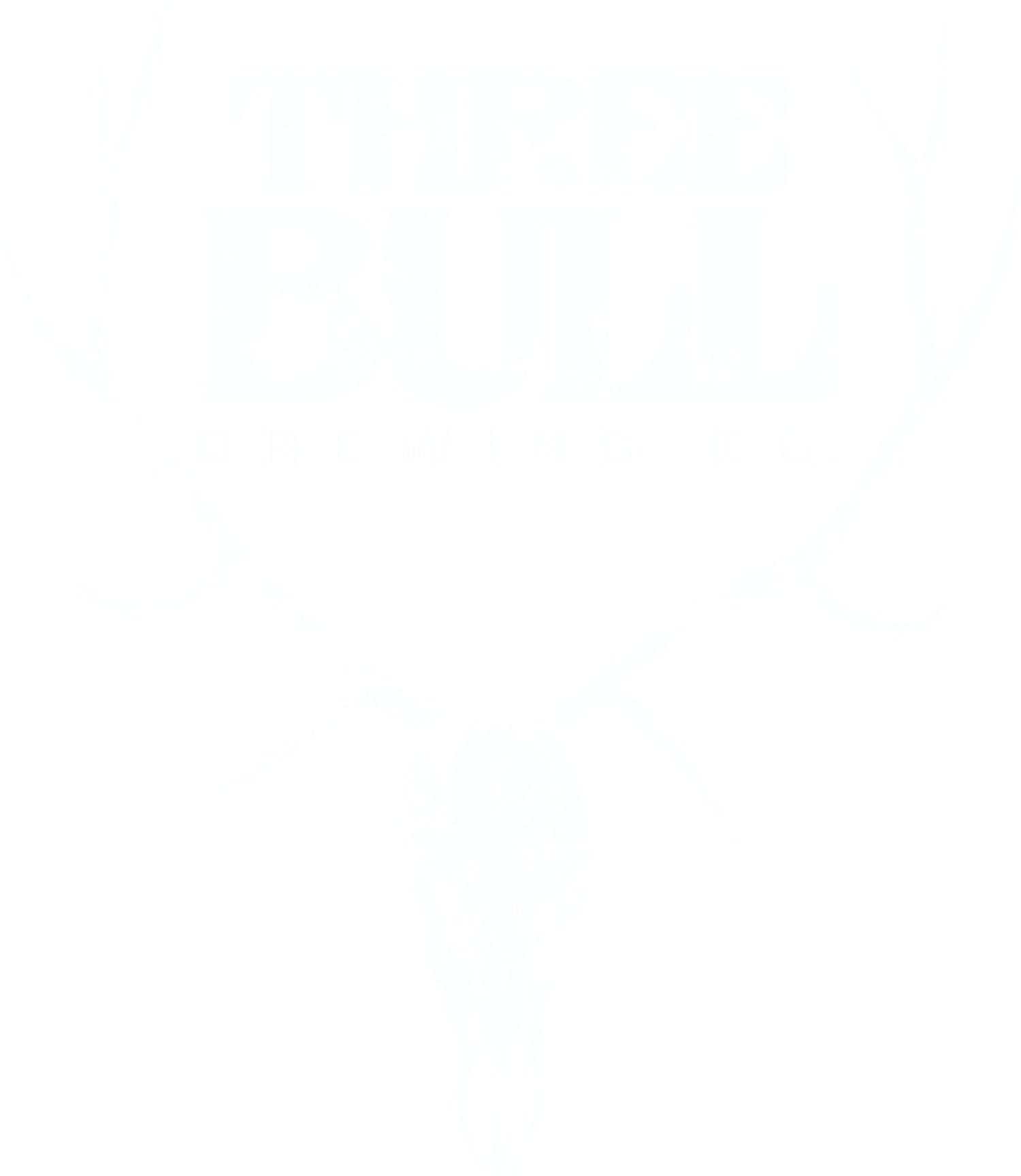 Three Bull Brewing