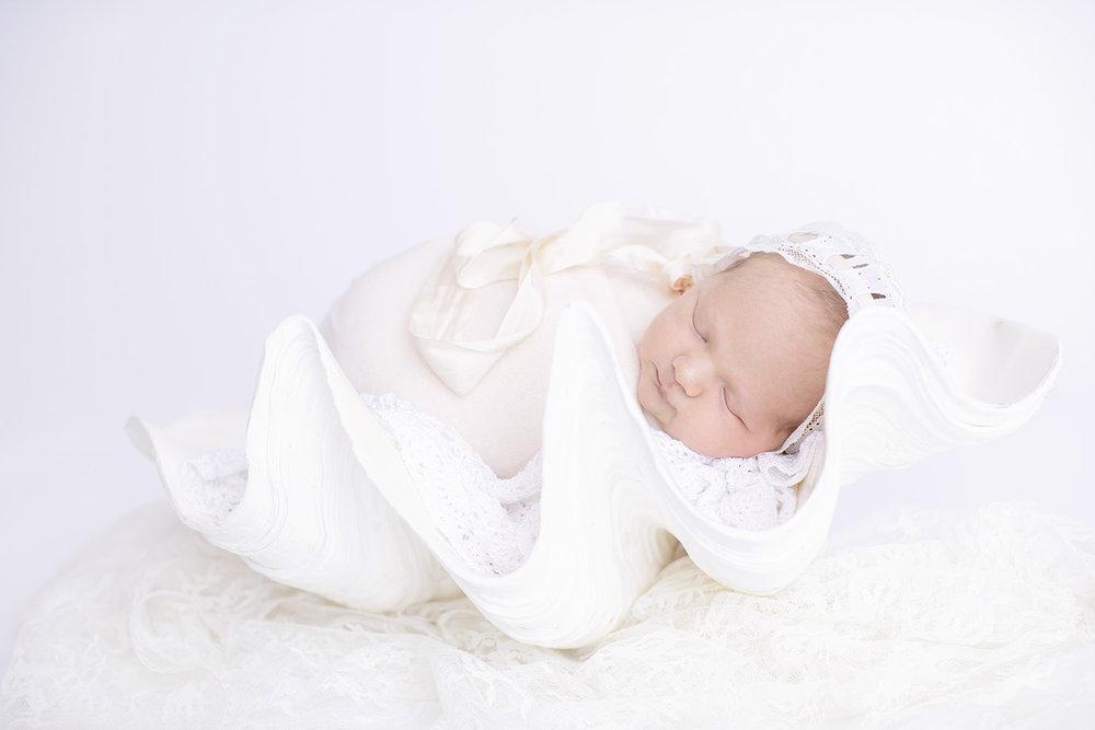 newborn-seashell-lace-girl.jpg