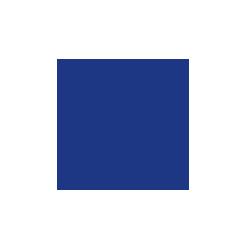 intruder-alert-icon-active.png.png