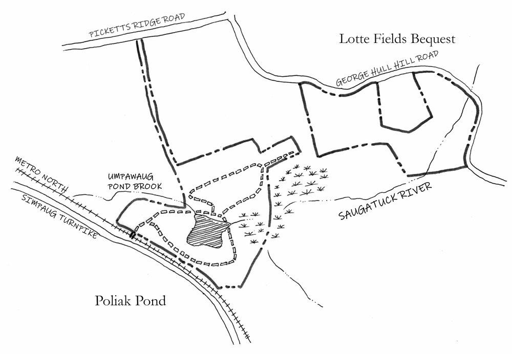 Fields Poliak.jpg