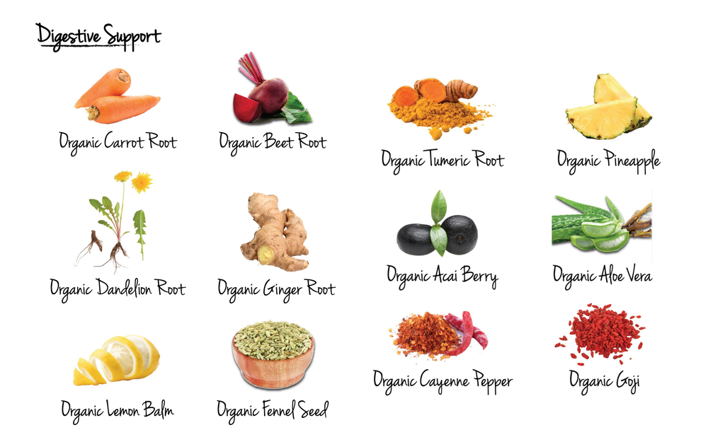 The Daily Detox: Digestive Support Blend