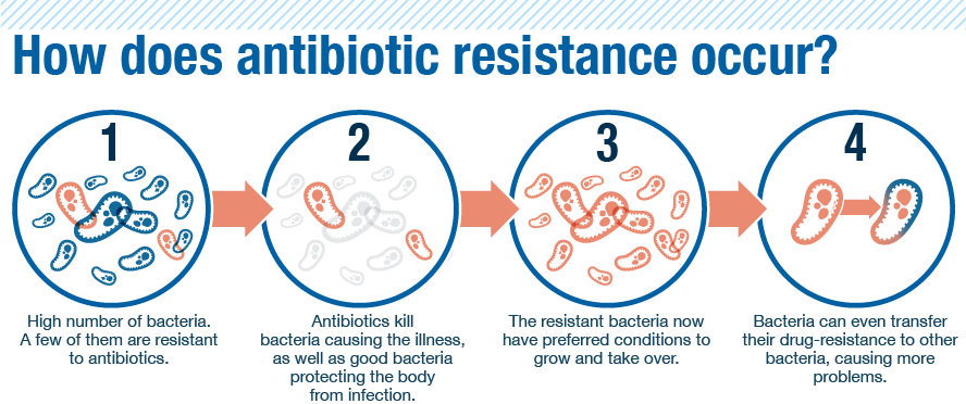https://sites.psu.edu/siowfa15/2015/11/19/antibiotic-usage-and-resistance/