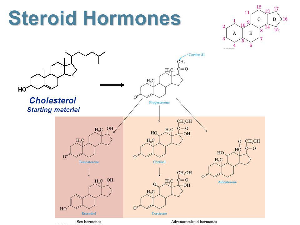 2a263-steroid2bhormones2bcholesterol2bstarting2bmaterial.jpg