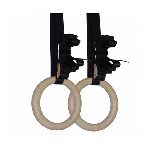 Olympic Gymnastic Rings