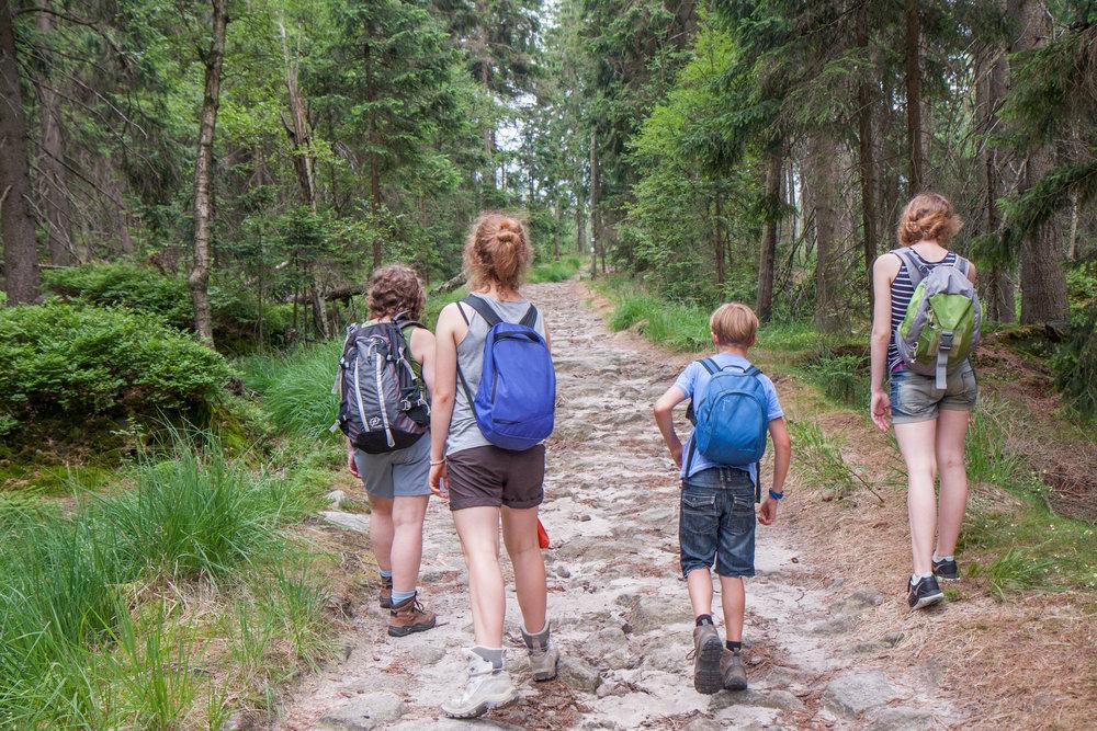 Begin Your Journey -