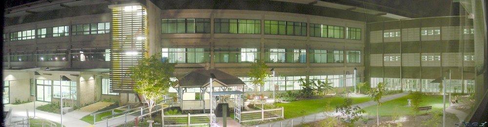 Townsville-General-Hospital-courtyard.jpg