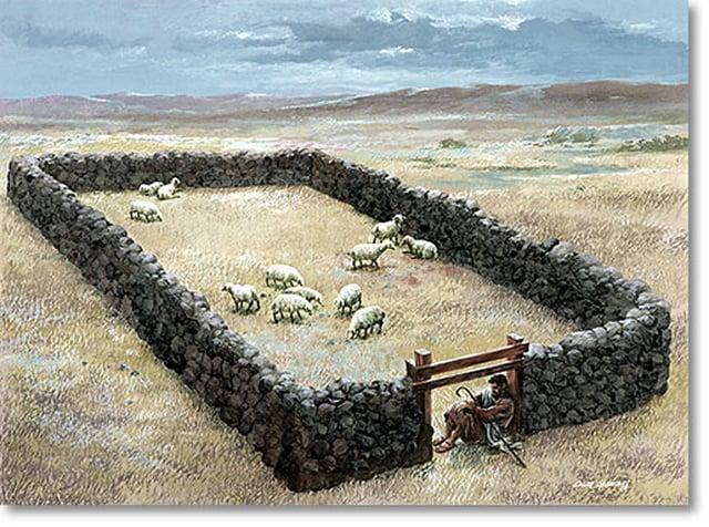 door-of-sheep