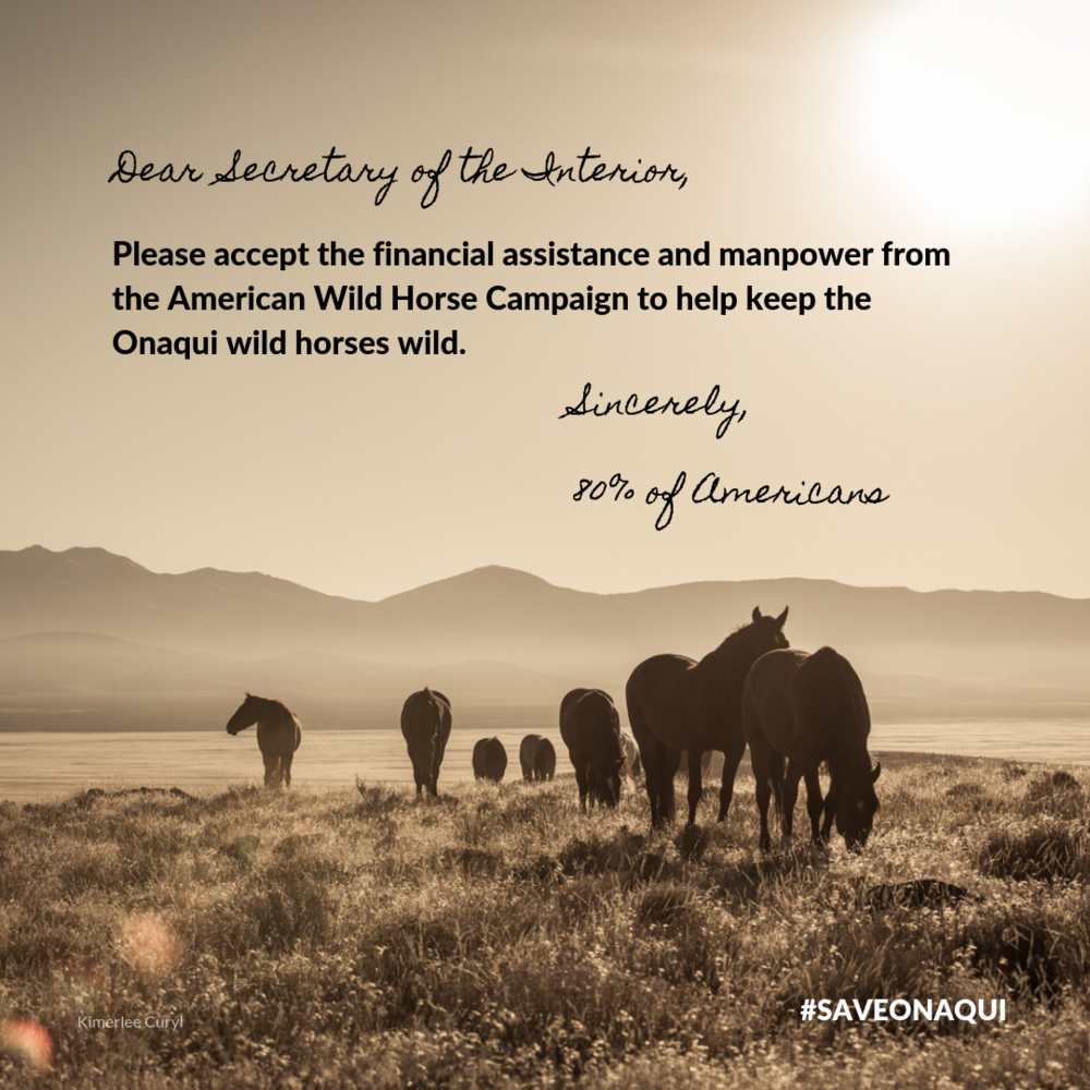 Facebook - Post on Interior Department's Facebook page.  Instagram - Post of your page and tag @interior and @mypubliclands
