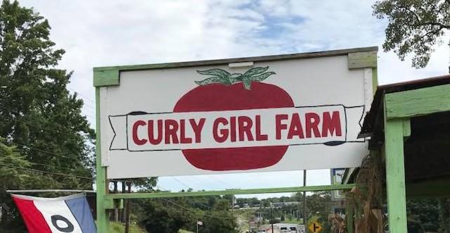 Curly Girl Farmstand Sign.jpg