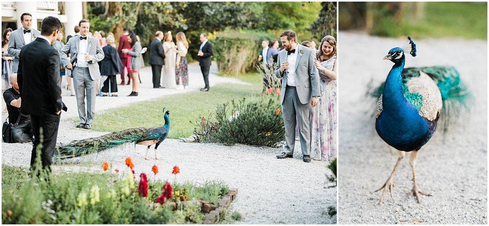 Magnolia Gardens Wedding, Charleston, SC_Erin L. Taylor Photography_0066.jpg