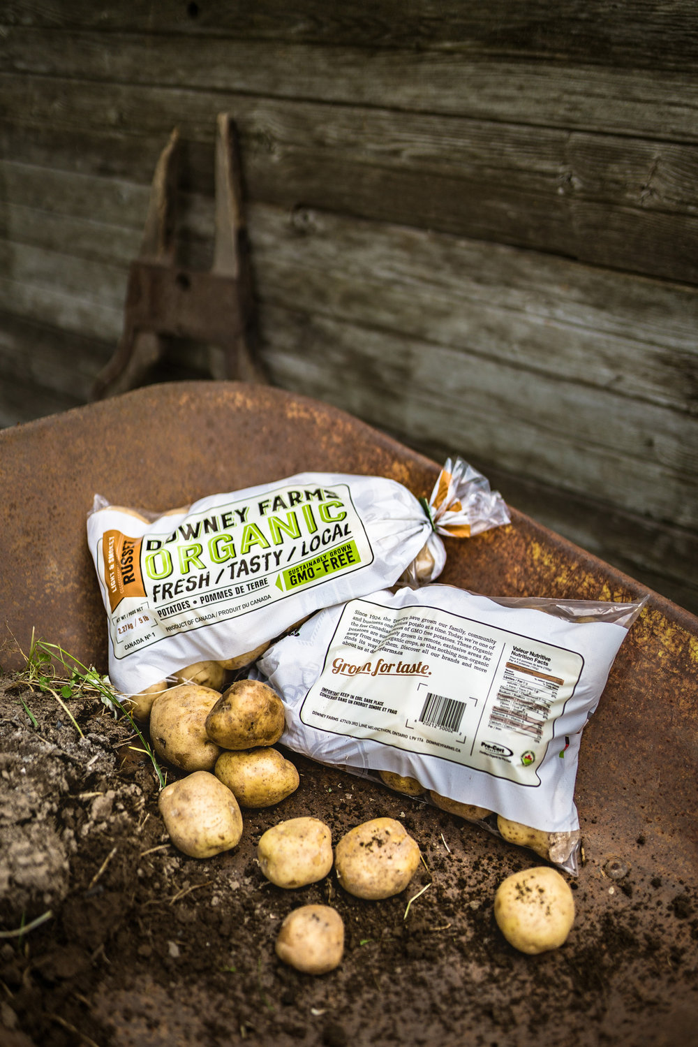 Downey Farms Organic Potatoes in a wheel barrow. Featuring packaging design by Touchwood Design.