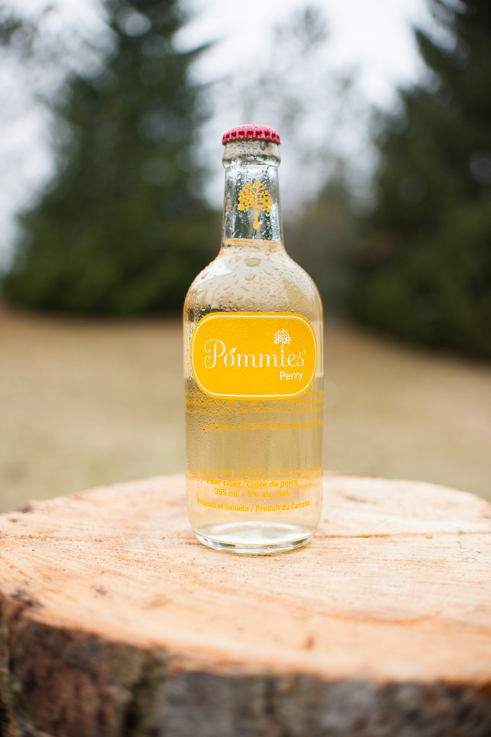 Poster design for Pommies Dry Cider based in Caledon, Ontario. Bottle within a tree and grunge texture within a simple flat design.