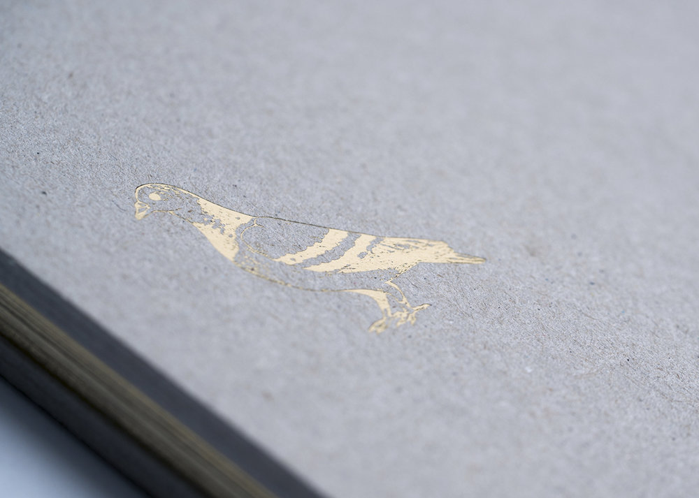 Gold foil illustration of a pigeon for hardcover of Pigeon book.